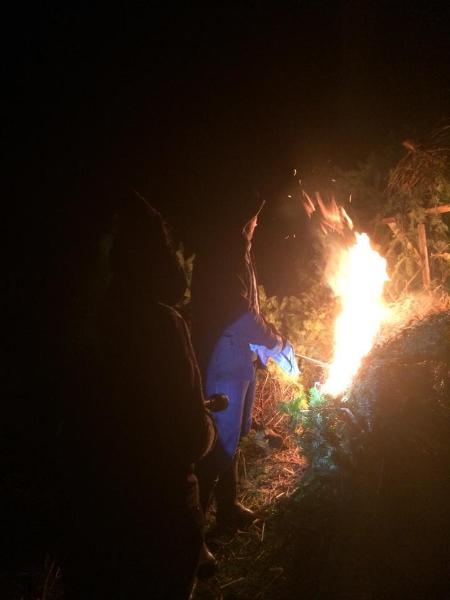 grand-feu-2015-04